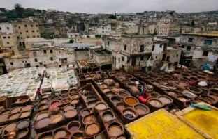 Famous tannery in Fez